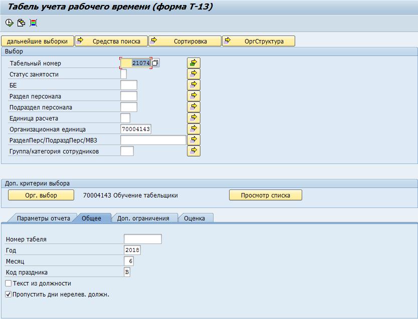 Bildung der T-13-Form im SAP HCM-System 65